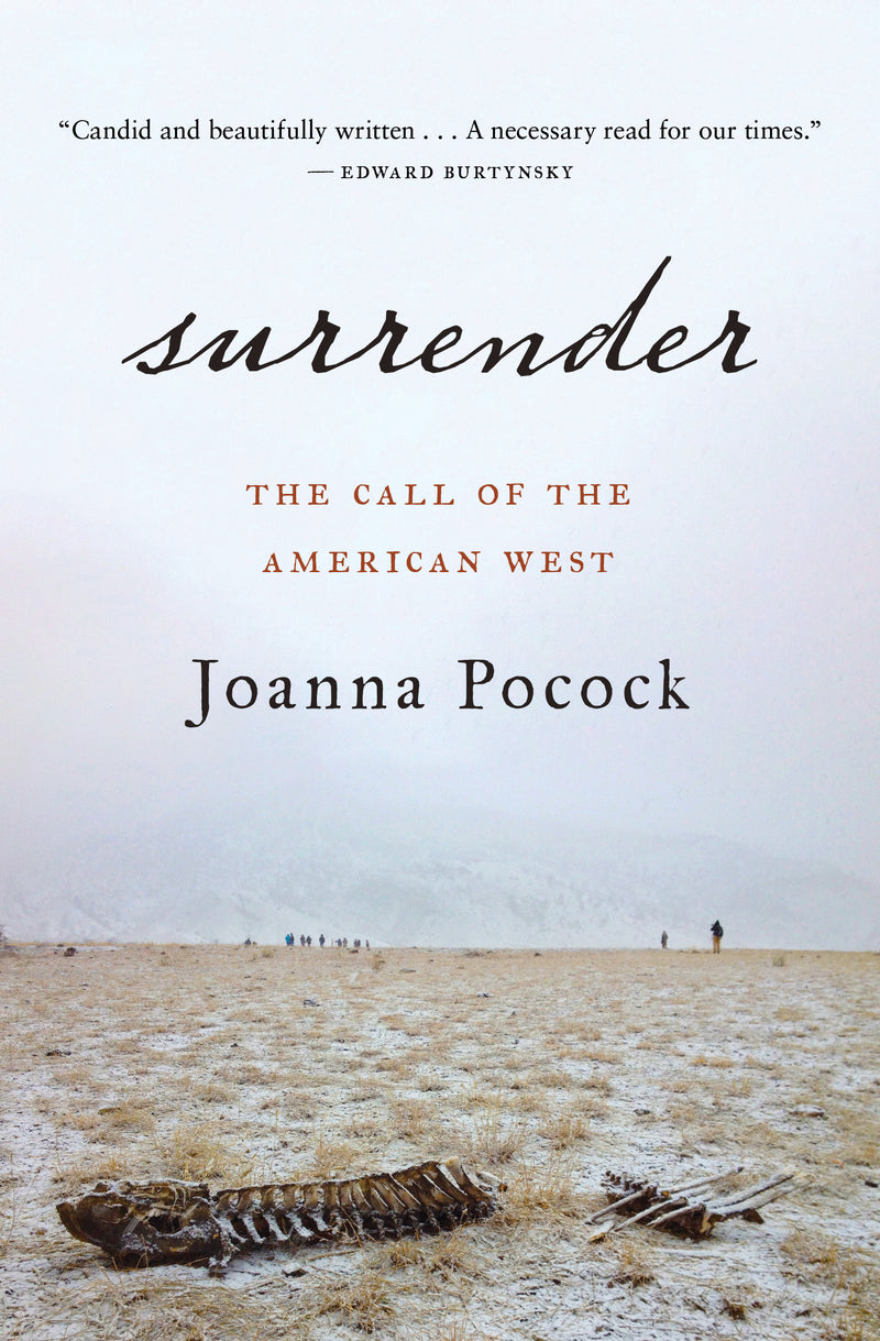 Cover of Surrender