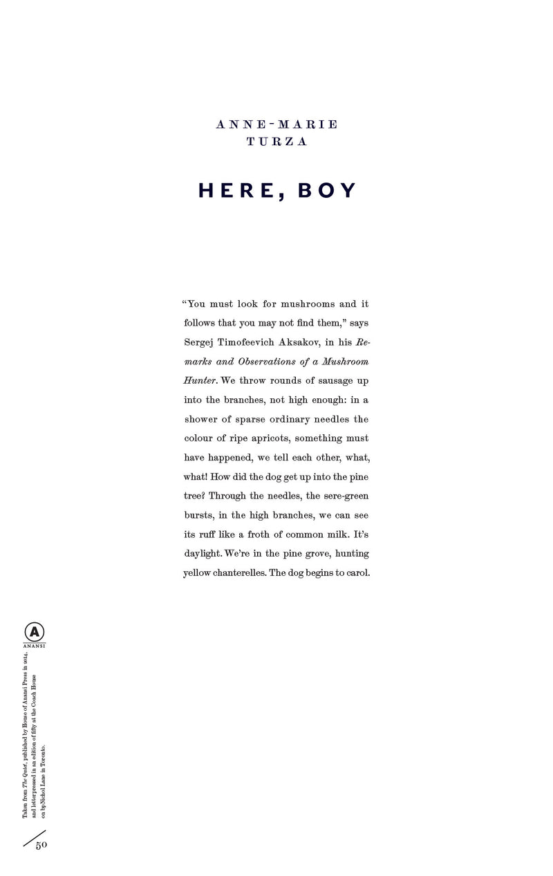Cover of Here, Boy by Anne-Marie Turza