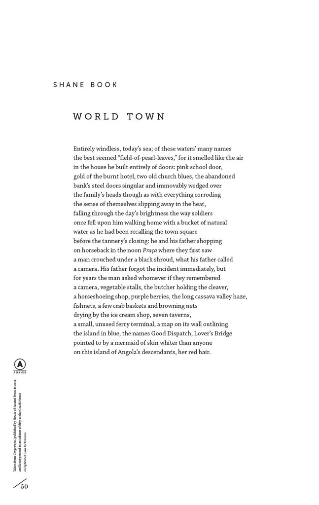 World Town by Shane Book