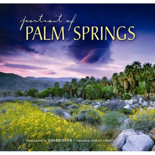 Portrait of Palm Springs - Just Fabulous Galleries