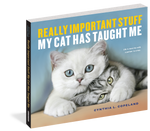 Really Important Stuff My Cat Has Taught Me book