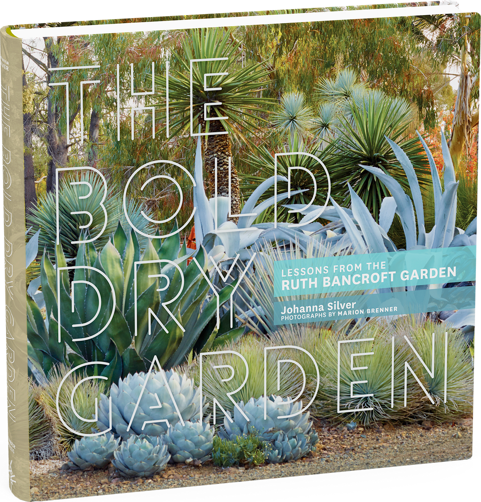 The Bold Dry Garden book