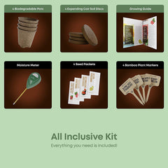 Exotic Fruits Growing Kit
