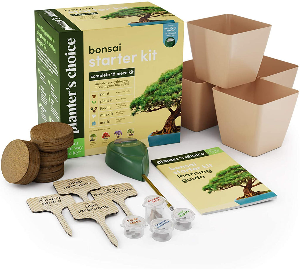 Bonsai Kit Planterschoice