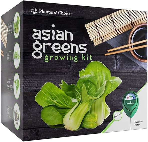 Asian Greens Growing Kit