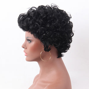 Women Fashion Short Curly Wave Charming Full Wig Cosplay Party Hairpiece Gift - Vipbeautycompany