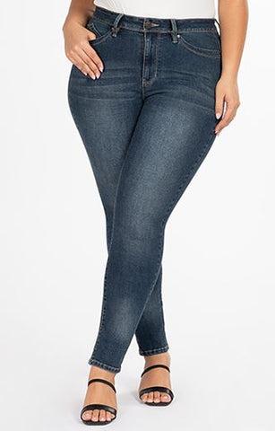 Plus WBB High-Rise Skinny Jean