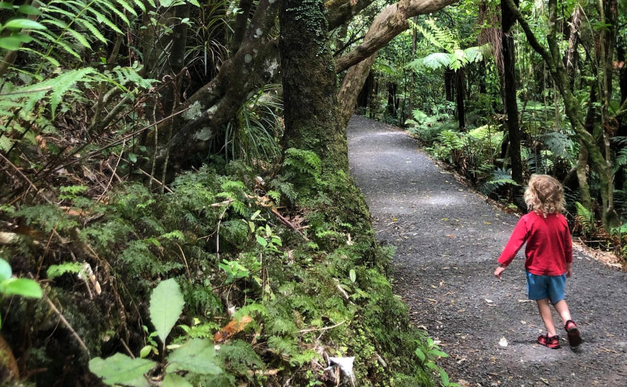Waikato Family Adventures: Towering black sand dunes, dancing fairies and skyward waterfalls