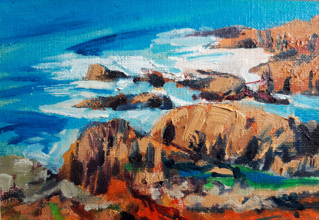 Whiting Cove study