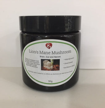Lions Mane Mushrooms 50g Broome Natural Wellness - Broome Natural Wellness