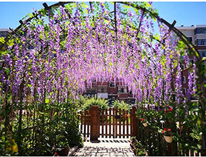 Artificial Silk Wisteria Vine Rattan Garland Fake Hanging Flower Party Home Garden Outdoor Ceremony Floral Decor,3.18 Feet, 6 Pieces (Purpule-2)