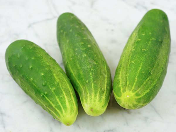 Cucumbers (Smallish)