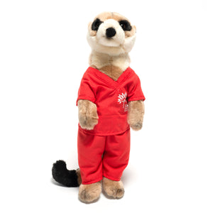 Meerkat in scrubs