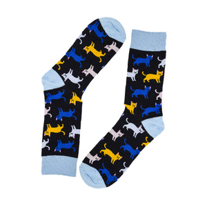 Cat Socks by Inverloch Diabetic Unit Auxiliary