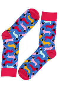 Sausage Dog Socks by Inverloch Diabetic Unit Auxiliary