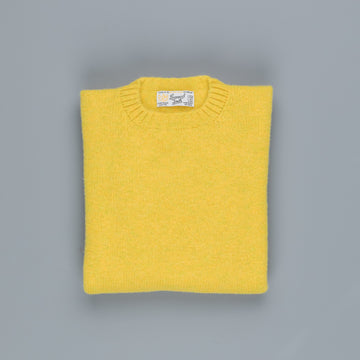 Laurence J. Smith  Super soft Seamless Crew Neck Pullover Pistachio