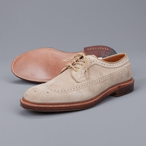 New Stock! Alden Milkshake suede longwing blucher