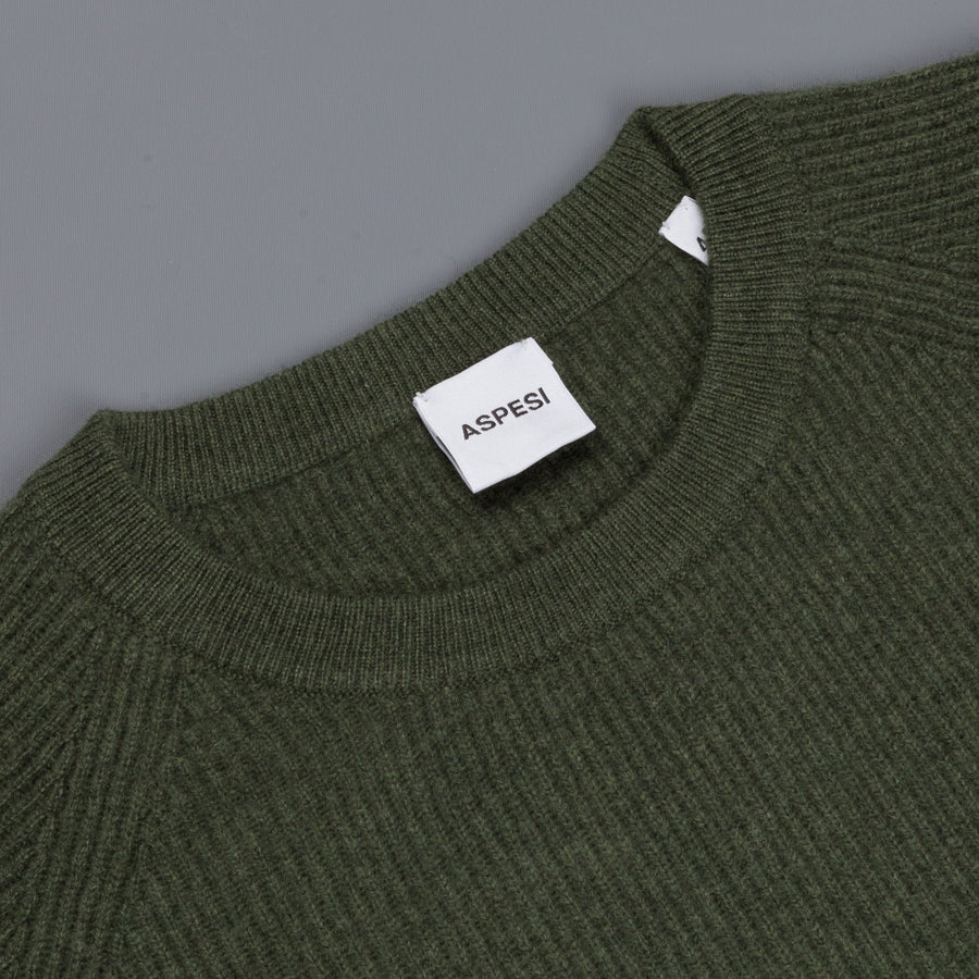Aspesi Ribbed Cashmere Crew Neck sweater Verde