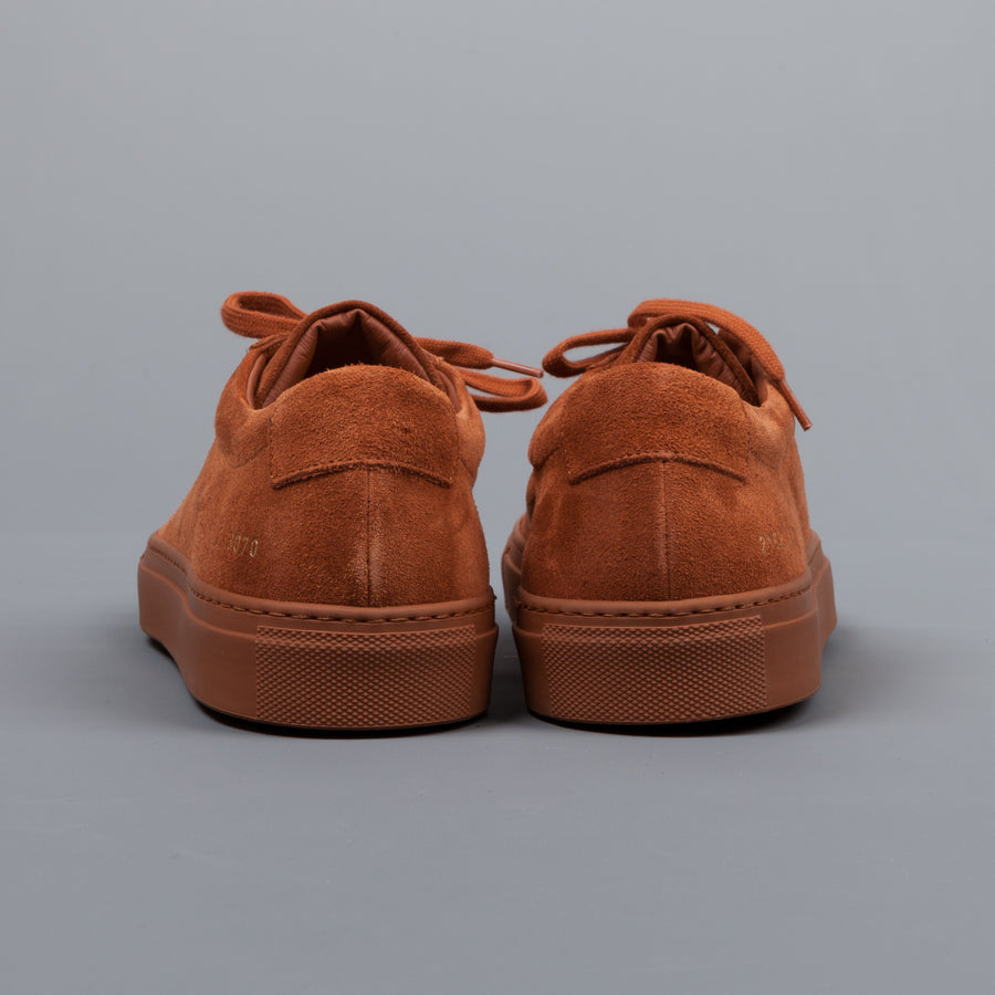 Common Projects Achilles low in suede Rust