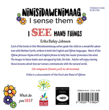 Load image into Gallery viewer, Ninisidawenimaag - I See Many Things (Book 1)
