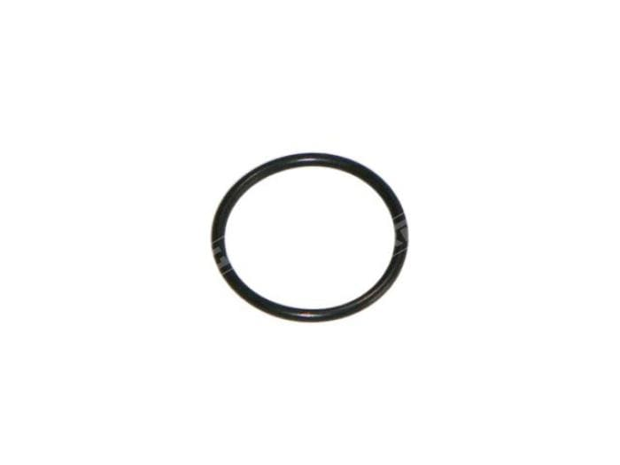 Gartrac Escort Mk1 & Mk2 Thrust Bearing Carrier O Ring