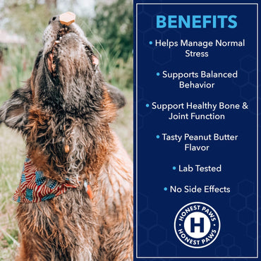Calm Hemp Treats Promotes Dog Relaxation Peanut Butter Flavor