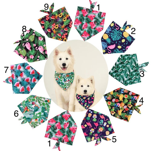 Tropical Dog Bandanas