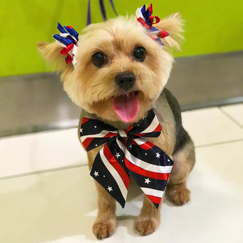 Patriotic Bows and Ties