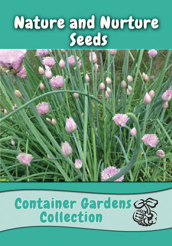 Container Garden Collection