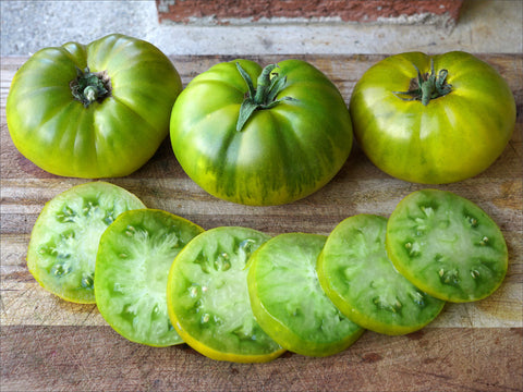 Tasty Evergreen Tomato