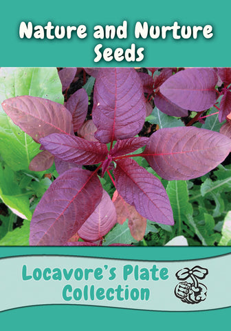 Locavore's Plate Collection