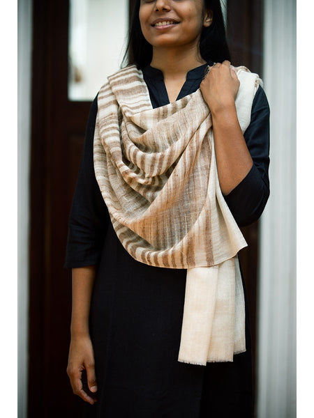 Pashmina Shawl For Men And Women - ahmedabadtrunk.in