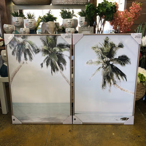 Palm Days Framed Canvases 62cm x 93cm