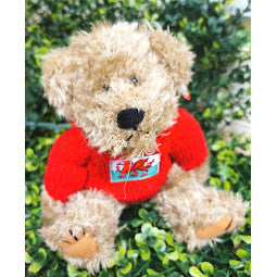 Image of teddy bear wearing red jumper with Wales flag logo