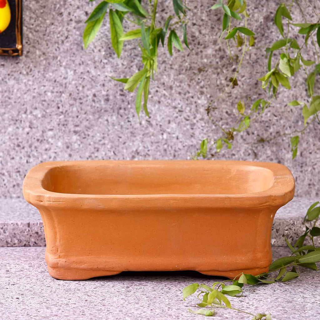 Designer Saucer Square Pot For Plant
