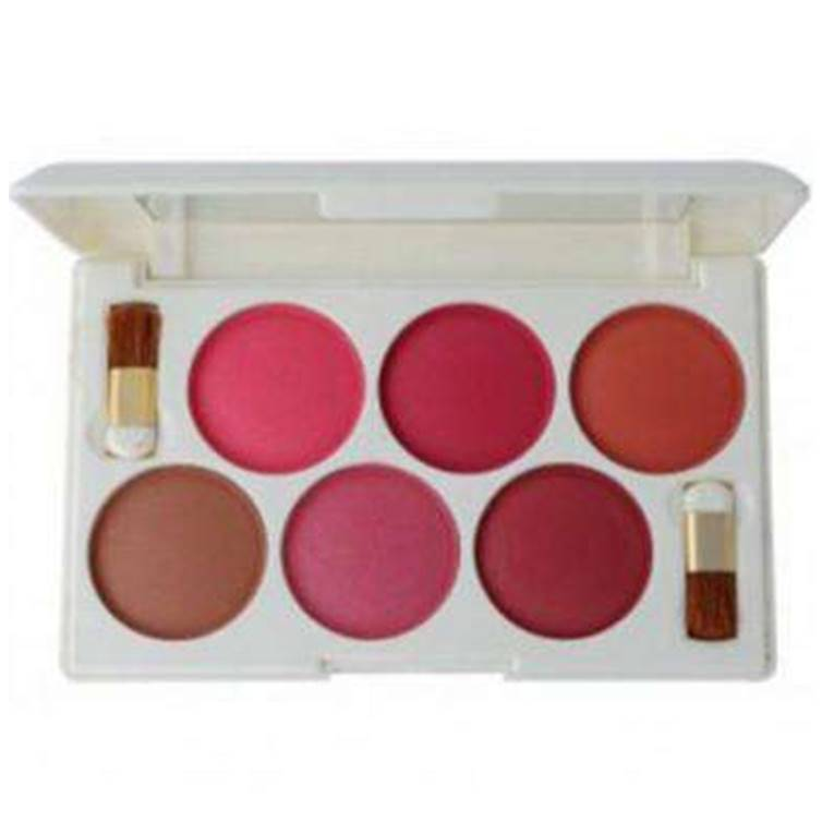 Rivaj 6 in 1 Dome Blush on Palette