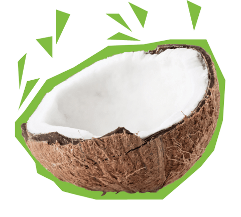 Coconut Chips & Half a Coconut