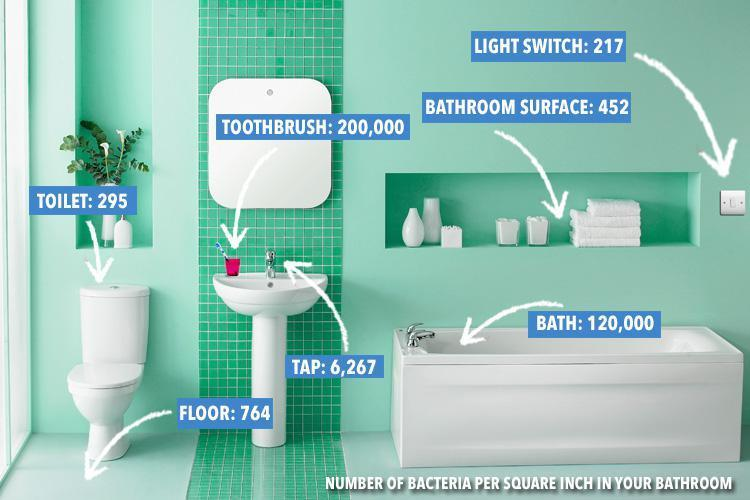 This is how many germs are lurking in YOUR bathroom, and you'll be horrified at the dirtiest spot