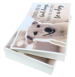 36 Pack Motivational/Inspirational Quote Greeting Cards - Bulk Box Set Note Cards- 6 Assorted Dog Designs - Blank Inside - Envelopes Included, 4 x 6 Inches