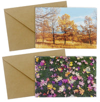 All Occasion Greeting Cards - 48-Pack Blank Note Cards, Bulk Box Set, 6 Fall Nature Autumn Designs, Assorted Trees and Leaves Photographs, Brown Kraft Paper Envelopes Included, 4 x 6 Inches