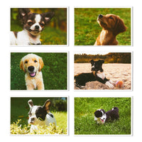 40 Pack Puppy Dog Postcards Bulk Set - All Occasion Assorted Blank Post Cards Greeting Bulk Box Set - 4 x 6 Inches
