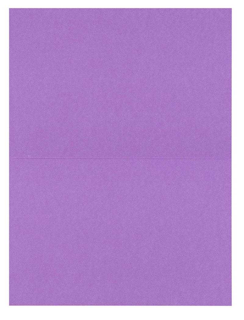 48-Pack Blank Greeting Cards - Plain Cards and Matching Color Envelopes for DIY Holiday Cards, Thank You Cards, Party Invitation, Birthday, Wedding, Lavender Purple, 4 x 6 Inches