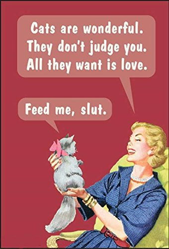 Cats Are Wonderful. They Don't Judge You.... funny fridge magnet (ep)