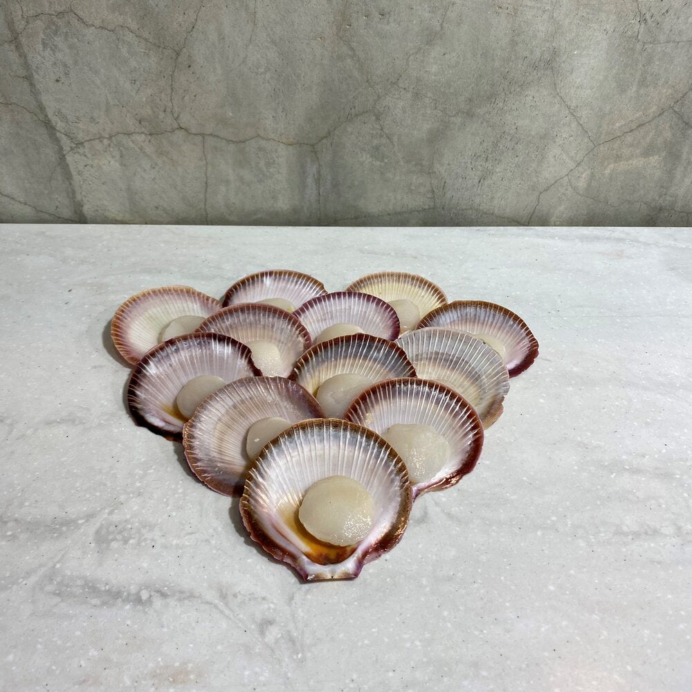 Load image into Gallery viewer, Half-Shell Scallops
