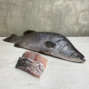 Barramundi Skin-on Fillets