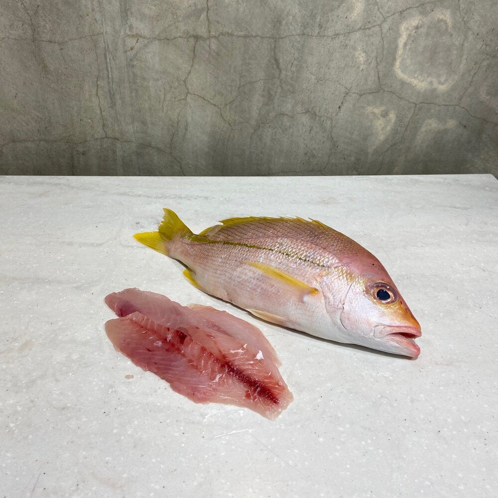 Load image into Gallery viewer, Tropical Snapper Fillets