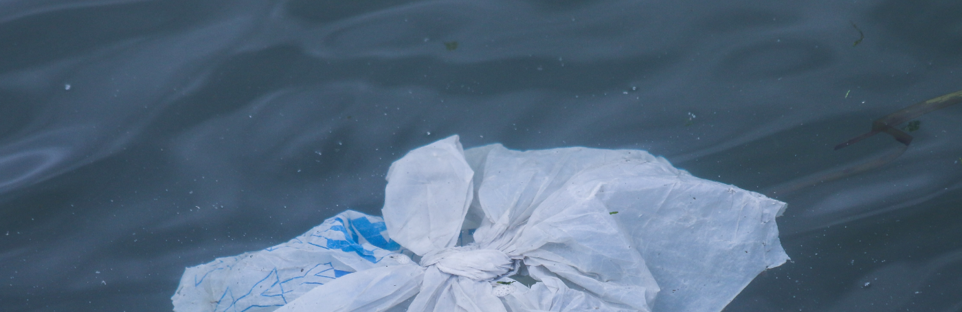 No More Free Plastic Bags | The Comarché