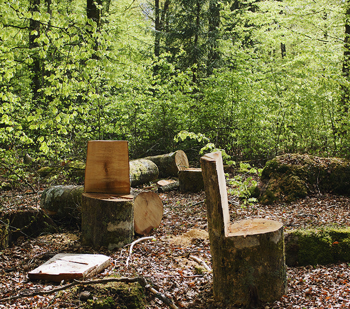 Visit Stedsans in the Woods - Photography Filip Gielda
