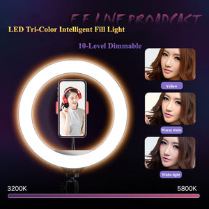 LED Selfie Ring Lamp