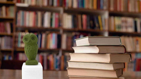 Owl figurine in a philosophers library